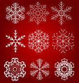 Set of beautiful snowflakes vector illustration — Stock Vector