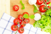 The branch of cherry tomatoes — Stock Photo