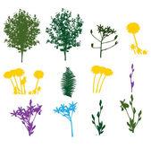 Set of Plant, Tree, Foliage Elements Silhouette Vector Illustrat — Stock Vector