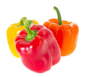 Colored Fresh Sweet Pepper Isolated on White Background — Stock Photo