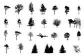 Set of Tree Silhouette Isolated on White Backgorund. Vecrtor Ill — Stock Vector