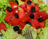 Delicious salad with  tomatoes, olives and peppers. — Стоковое фото