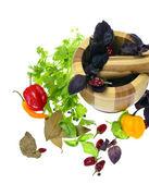 трава петрушки, лавровый лист и перец, перец — Стоковое фото