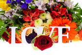Bunte Blumen Blumenstrauß isoliert auf weißem Hintergrund — Stockfoto