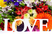 Colorful Flowers Bouquet Isolated on White Background — Foto de Stock