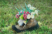 Flowers in old shoe on grass — Stock Photo
