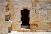 Oude deur — Stockfoto