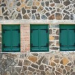 Windows with green shutters — Stock Photo