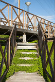 Wooden staircase with green plants — Stock Photo