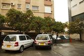 Parking place under orange trees. — Stock Photo