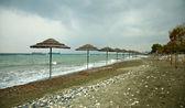 在海滩上的茅草顶遮阳伞 — 图库照片