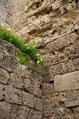 Historiska othello slottet inuti — Stockfoto