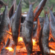 Fish fried on a fire - Stock Photo