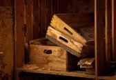 木製の宝 — ストック写真