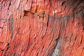 Pietre rosse, luce tramonto rocce — Foto Stock