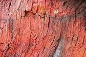 Piedras rojas, luz del atardecer rocas — Foto de Stock
