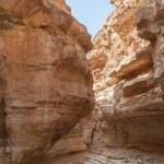 Mountain oasis Tamerza in Tunisia — Stock Photo