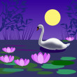 Swan in the Moonlight — Stock Photo