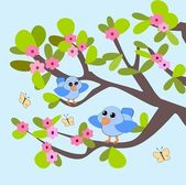 Two blue Birds — Stock Photo