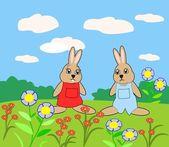 ładny królików — Zdjęcie stockowe