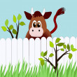 Stock Photo: Funny Cow