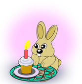 Birth Day Rabbit — Stock Photo
