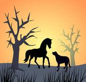Cavallo e cane di tramonto — Foto Stock