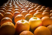 Two apples among many oranges — Stock Photo
