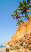 Palms up the Arabian sea red bluff — Stock Photo