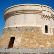 Martello tower in Fornells, Menorca — Stock Photo #13852436