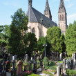 The Capitular Church of SS Peter & Paul and Vysehrad cemetery — Zdjęcie stockowe #32481031