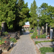 Vysehrad cemetery — Stock Photo
