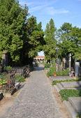 Vysehrad cemetery — Stock Photo