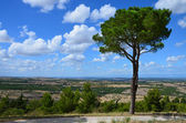 The landscape around the castle Castel del Monte — Stock Photo