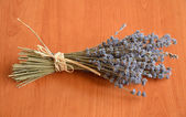 A bunch of dried lavender flowers — Stock fotografie
