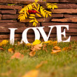 Royalty-Free Stock Photo: Inscription LOVE against autumn leaves