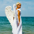 Angel — Stock Photo #28596031