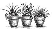 Flower pots — Stock Vector