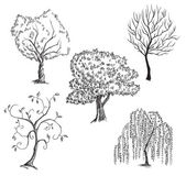 Vector trees collection — Stock Vector
