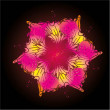 Black background hibiscus vector art - Imagens vectoriais em stock
