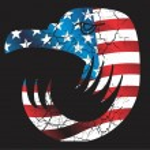 American flag eagle head vector art — Stock Vector