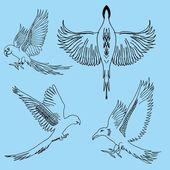 Tattoo tribal birds vector art — Stock Vector