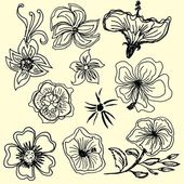 Hibiscus flower silhouettes vector art — Stock Vector