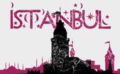 Istanbul big city vector art — Stock Vector