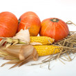 Thanksgiving pumpkins with corn and straw on white background — Stock Photo #13853473
