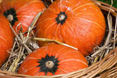 Thanksgiving pumpkins with straw in basket — Stock Photo