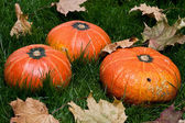 Thanksgiving pumpkins on grass with autumn leafs — Stock Photo