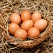 Brown organic eggs in a basket on straw — Stock Photo