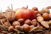 Red apples and nuts in a basket isolated on white background — Stock Photo