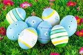 Colorful painted easter eggs located on a meadow with flowers — Stock Photo